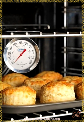 TIP #6: OVEN THERMOMETER, EVERY TIME