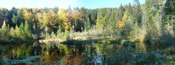 Озеро Журавлиное. Национальный природный парк «Сколевские Бескиды». Львовская область