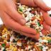 DEZVĂLUIRI ULUITOARE! Cu cât se vinde sănătatea românilor?