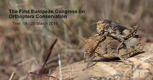 The First European Congress on Orthoptera Conservation