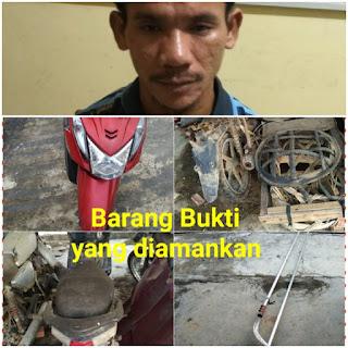 1 Dari 6 Pelaku Pencurian Buah Sawit Dibekuk Polisi