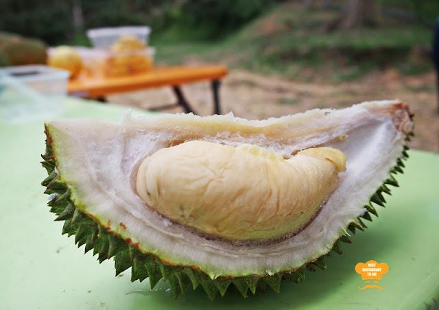 Frozen Golden Phoenix Durian Buffet at Durian Wonderland