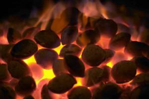 Energía de la Biomasa: Diferencia entre poder calorífico inferior ...