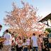 Com novo recorde de público, 11ª Osterfest chega a 210 mil visitantes