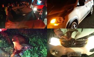 Duas mulheres ficam feridas em grave colisão entre carro e animal no interior da PB