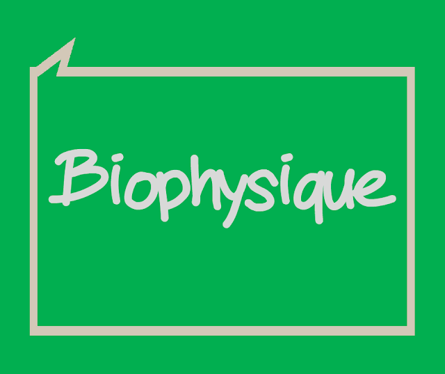 Cours Biophysique