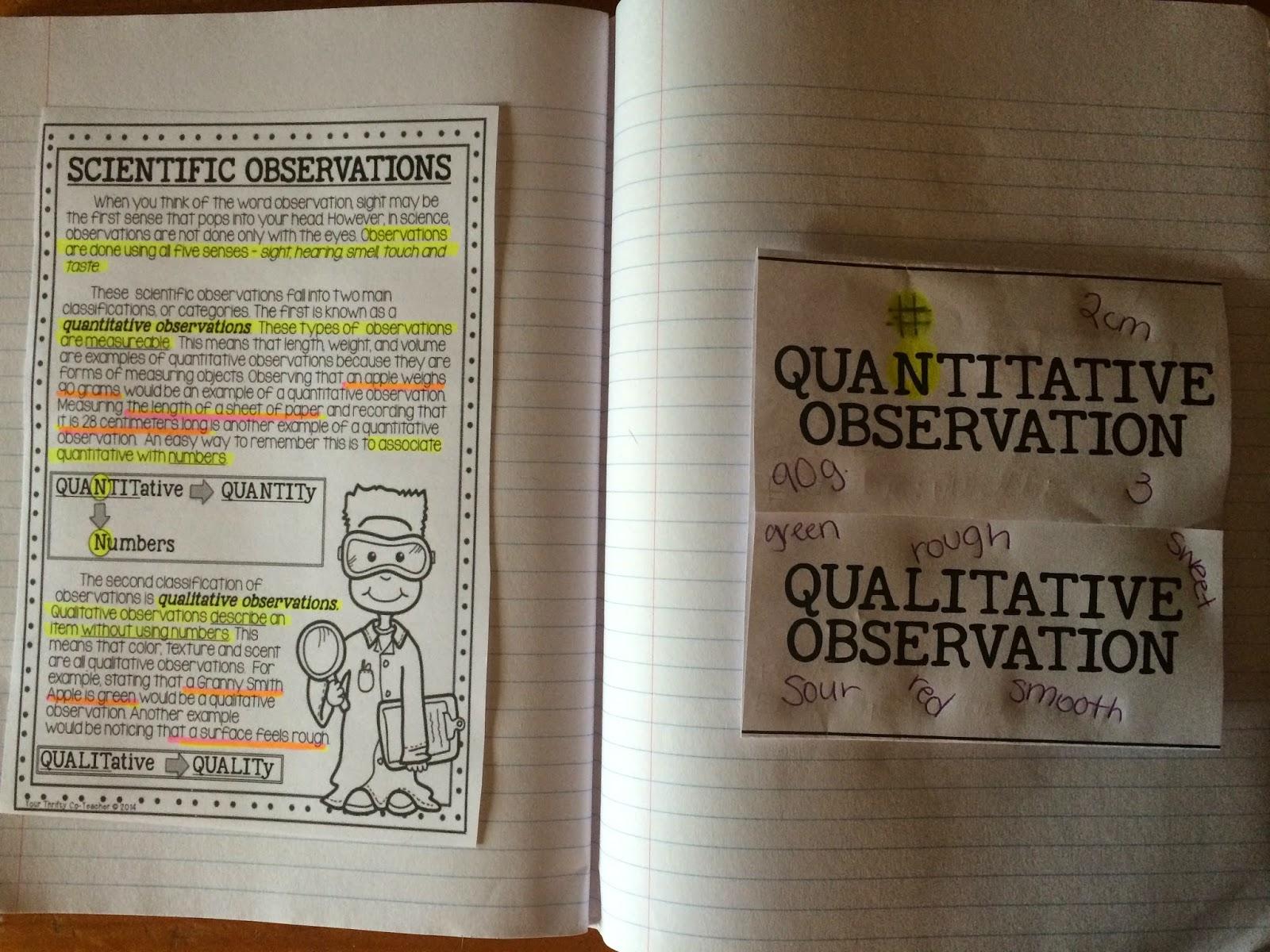 Taking A Closer Look Qualitative And Quantitative Observations