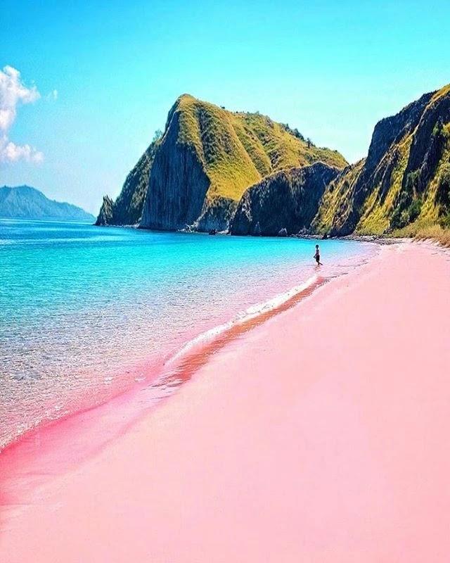 Pesona Pink Beach - Foto IG @nrend_noktalar