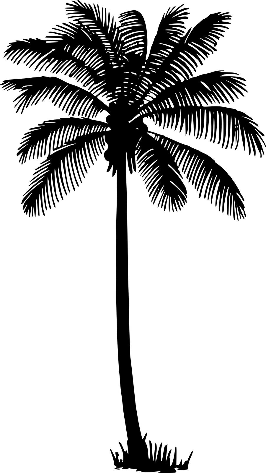 silhouette date palm tree - photo #21