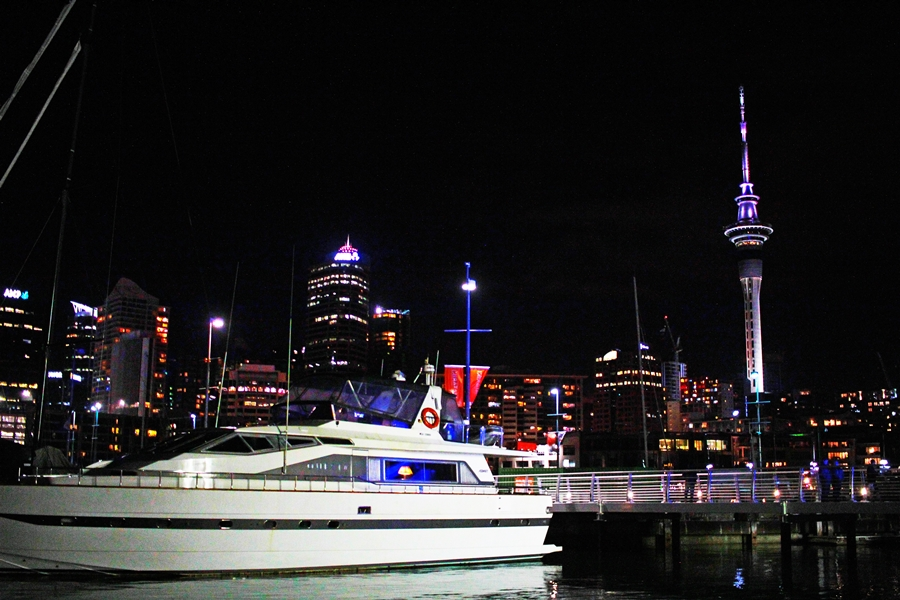 auckland skyline night