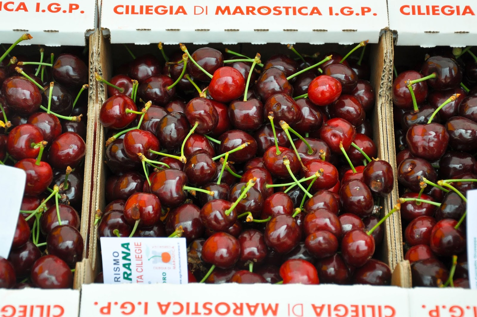Cherries from Marostica at the Cherry Show Market in Marostica, Veneto, Italy