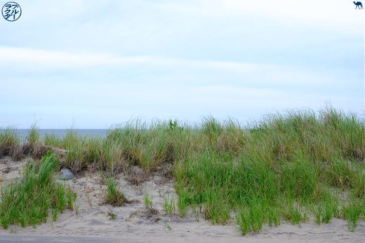 Le Chameau Bleu - Blog Voyage Block Island - Dune de Block Isand- Rhode Island -USA
