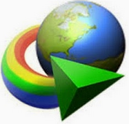 Internet Download Manager 6.21 review