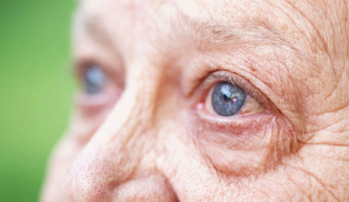 Vision Loss- Scary But a Realistic Possibility And The Ways to Avoid It