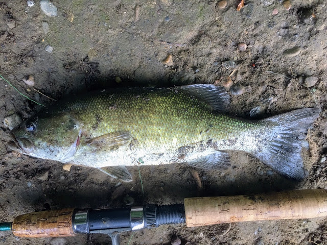 Smallmouth Bass Fishing Pittsburgh