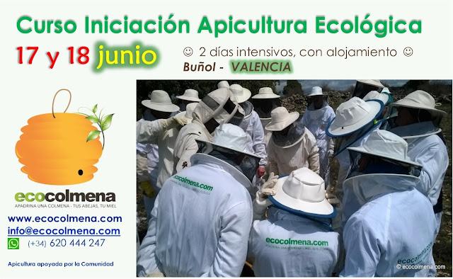 Curso de Iniciación de Apicultura Ecológica entre el 17 y 18 junio en Buñol, Valencia, España