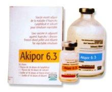 Một loại vaccin sử dụng trong chăn  nuôi heo. Ảnh minh họa