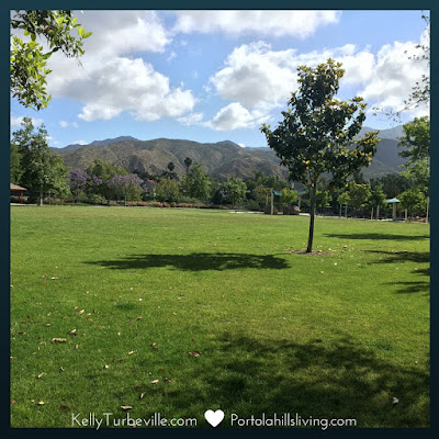 Concourse Park Portola Hills by Kelly Turbeville