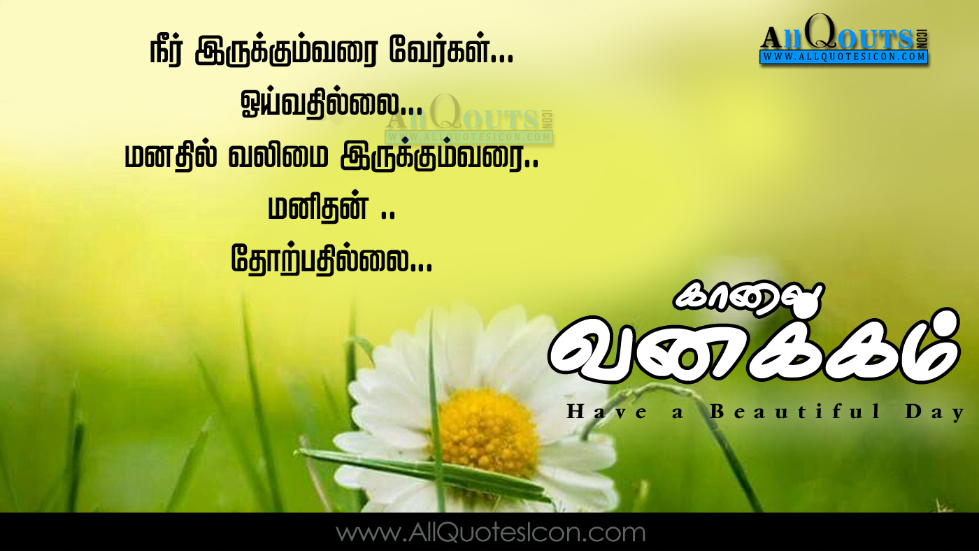 Beautiful Good Morning Greetings In Tamil Pictures Best Happy Good
