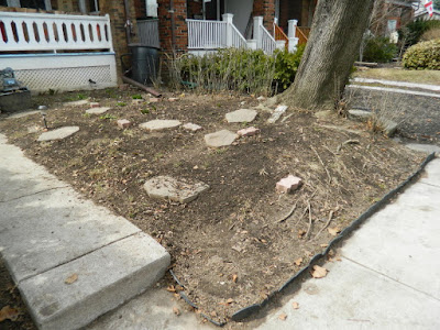 Paul Jung Gardening Services Toronto Gardening Company Davisville Mount Pleasant East Spring Front Garden Cleanup After