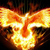 Вие сте Огнени Птици!