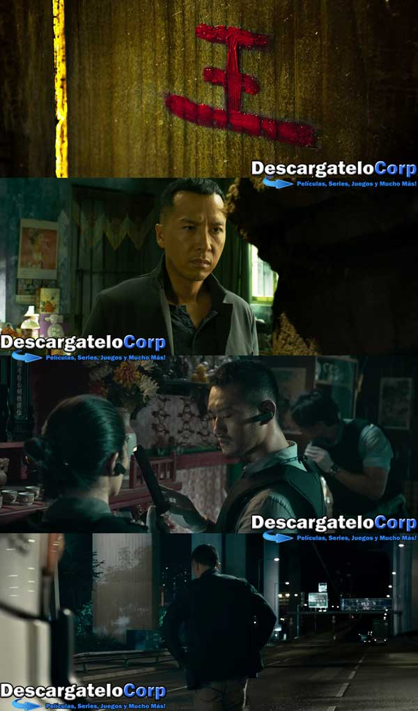 Descargar Kung Fu Jungle HD 1080p Latino
