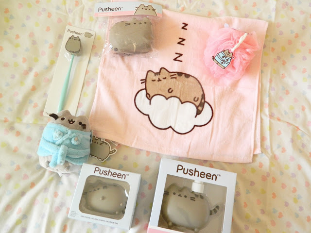 A photo showing all the items from the Pusheen Box Autumn 2018