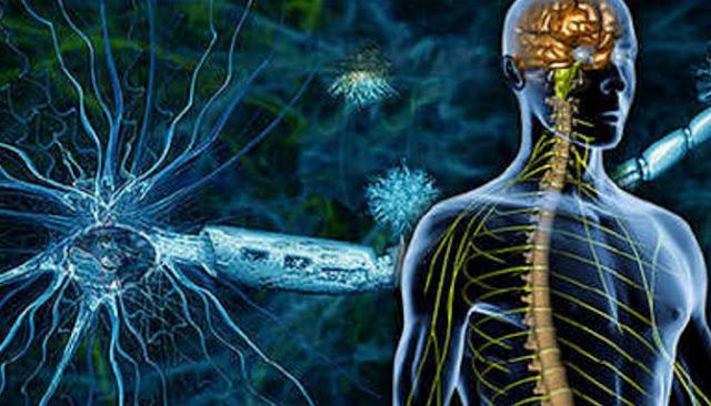 Enam Tanda Yang Mengindikasikan Kamu Mengidap Multiple Sclerosis