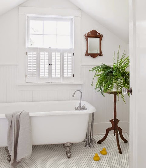 Plants In Bathroom Design Ideas