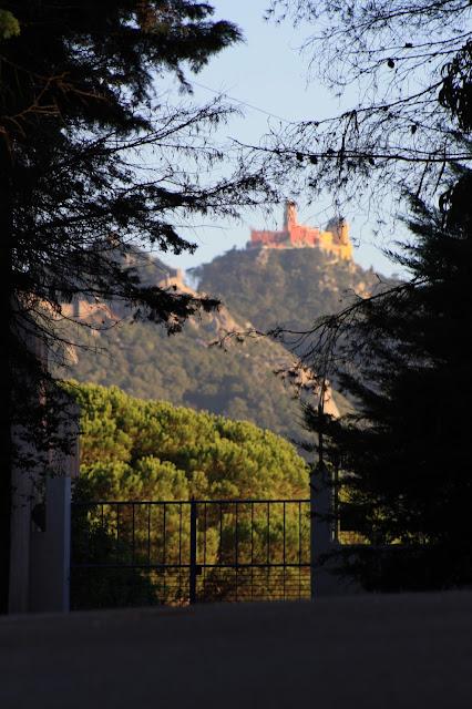 portão paisagem