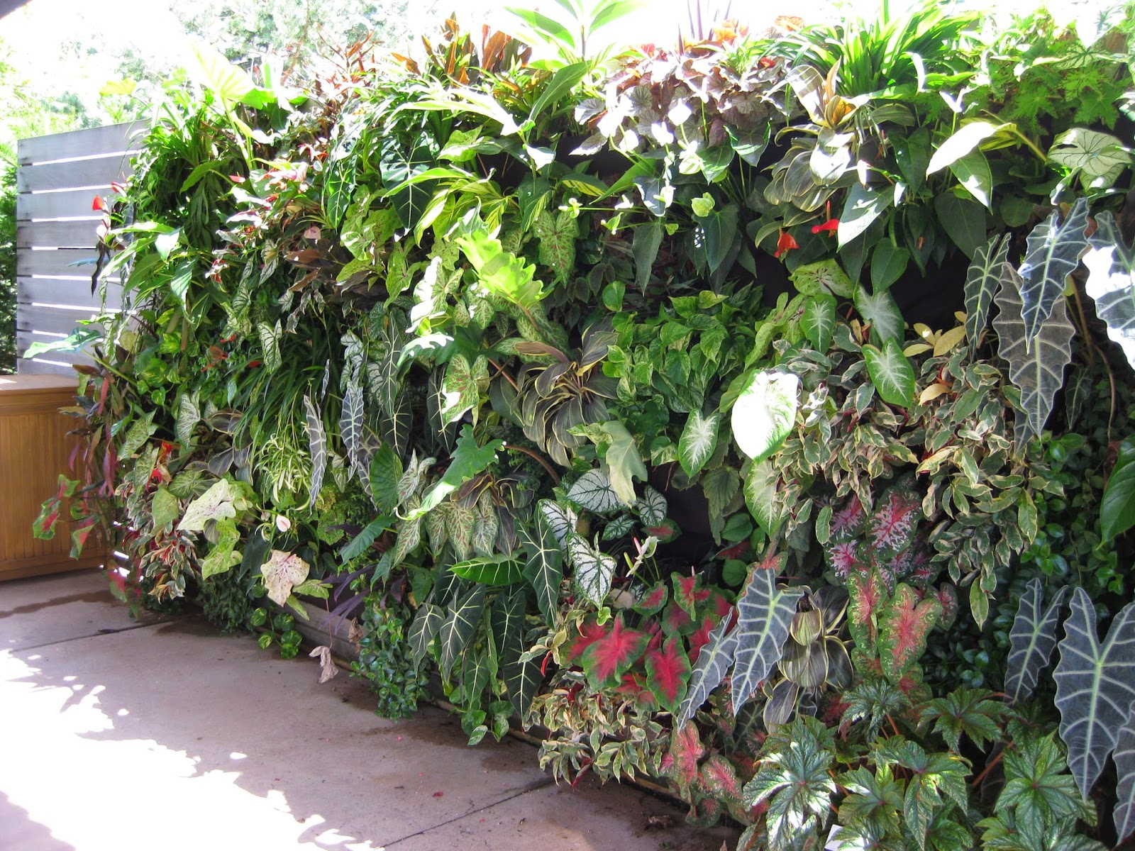 Amazing Extreme Vertical Gardening Rotary Botanical Gardens Short Links Chair Design For Home Short Linksinfo