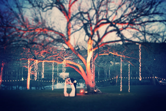 Rustic+classic+traditional+black+tie+platinum+wedding+bride+groom+rowing+country+club+purple+modern+succulents+succulent+centerpieces+lighting+lights+Gideon+Photography+24 - Black Tie & Cowboy Boots Required