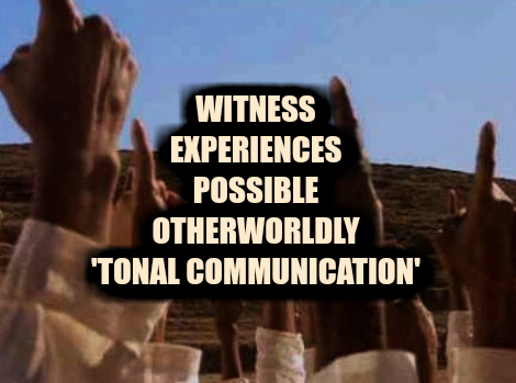 Witness Experiences Possible Otherworldly 'Tonal Communication'