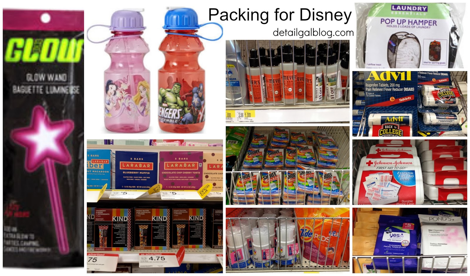What Kind Of Food Can You Bring Into Disney World