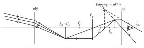 pembentukan bayangan teropong bumi untuk mata berakomodasi maksimum