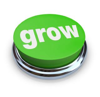 Grow Taller After Puberty Ebook