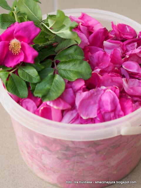 konfitura z platkow rozy, konfitura rozana, kwiaty roz, kwiaty w kuchni, ucieranie w makutrze, makutra,
