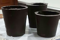 chocolate-cups