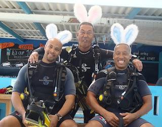Start your dive adventures...