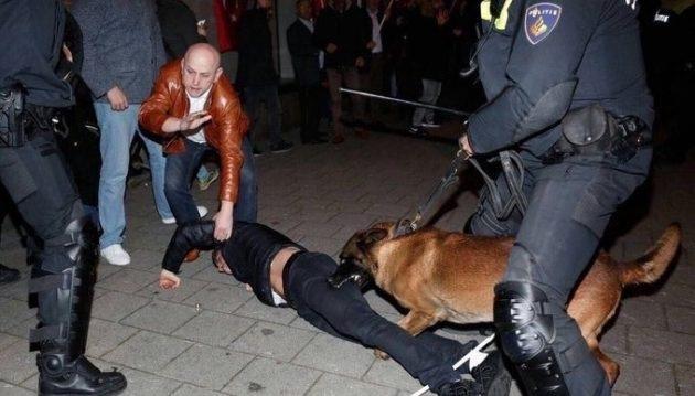 Οι Ολλανδοί τάισαν τους Τούρκο-ΜΟΓΓΟΛΟΥΣ  στα σκυλιά –βίντεο ΣΟΚ