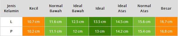 Berapa tinggi badan ideal anak laki laki usia 13 tahun?