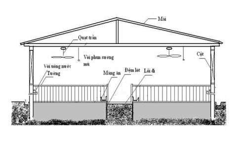 mô hình sử dụng đệm lót sinh học chăn nuôi biogasviet