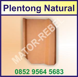 Plentong Natural