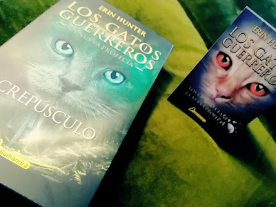 libro, juvenil, gato