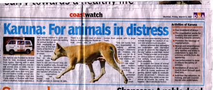 Karuna for Animals: News