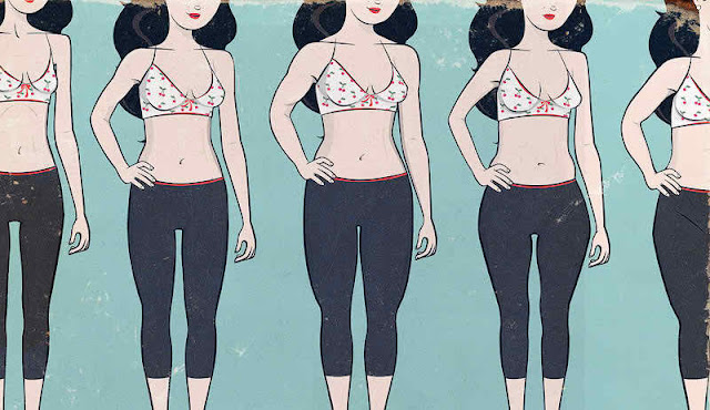 bombshell aesthetics the most attractive female body full article
