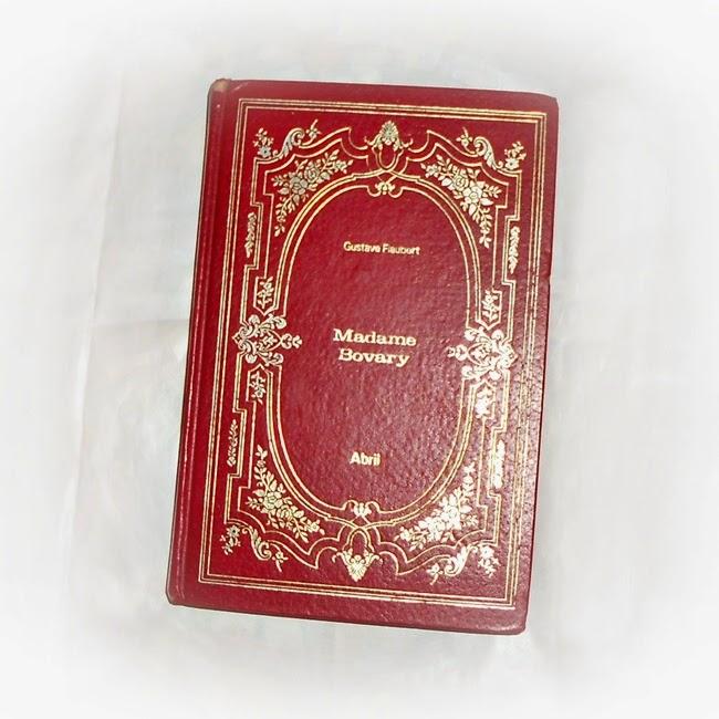 livro, Madame Bovary, Gustave Flaubert, sinopse