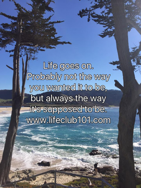 Life Is So Beautiful Live Your Life And Enjoy Every Moment Of It Life Goes On Quote
