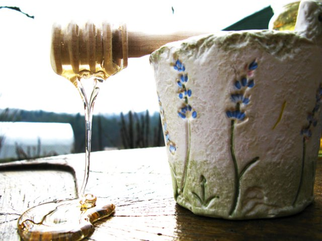 fresh acacia honey from beehive