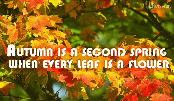 Autumn quotes, wishes and greetings of a beautiful leaves